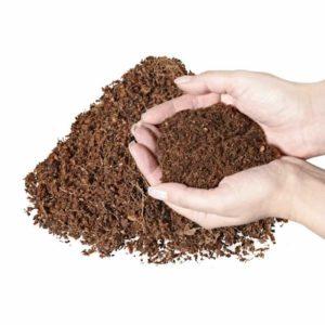 Feine Aussaaterde aus Kokosfaser - torffrei und undgedüngt